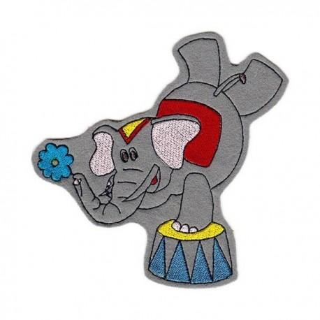 Circus elephant - boy